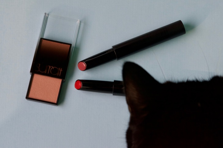 Surratt Beauty Lipslique Lipstick Eglantine Oh L'Amour review swatches cat